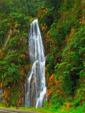 magical forest: A photo of a waterfall in the rain forest (New Zealand) Stock Photo
