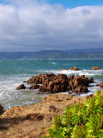 A photo of a Rocky Coast near Wellington, New Zealand photo