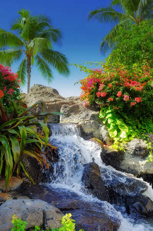 A photo of a waterfall in Paradise Stock Photo