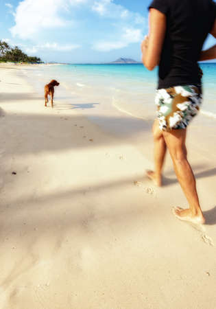 A photo of Runner and dog at the Beach of Paradise Stock Photo - 12308226