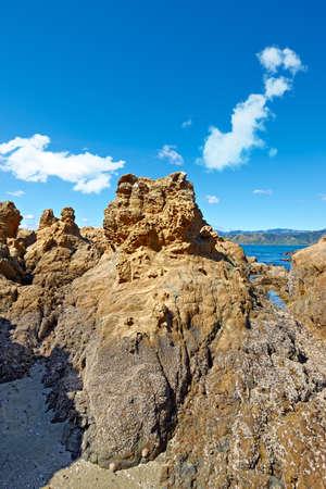 A photo of the coast near Wellington, New Zealand photo