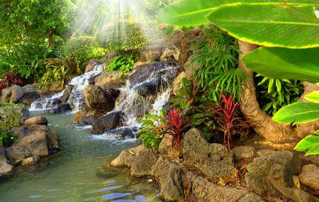 Small tropical garden waterfall