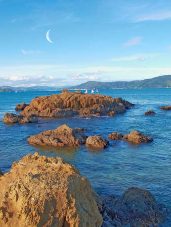 littoral: Landscapes of New Zealand - North Island