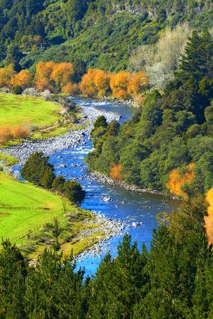 River scape from New Zealand Foto de archivo