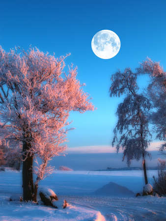 A winter landscape with moon and dark blue sky Stock Photo - 12564952