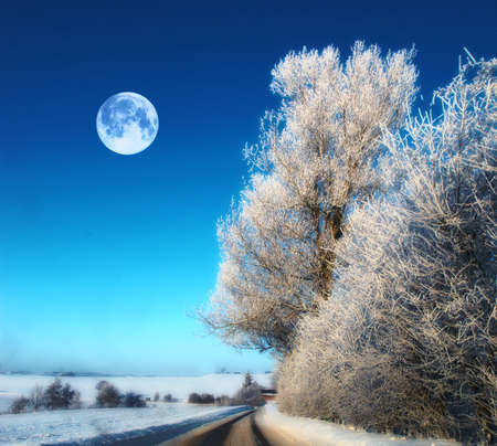 A photo of moon and winter landscape in snow photo