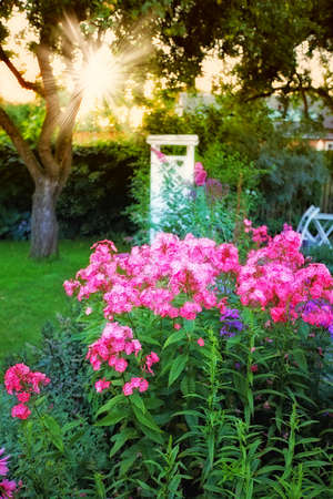 a photo of Beautiful garden details Stock Photo