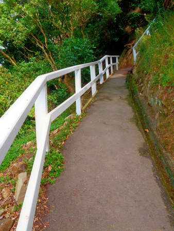 stockade: A photo of a trail with wooden railings on a hill side