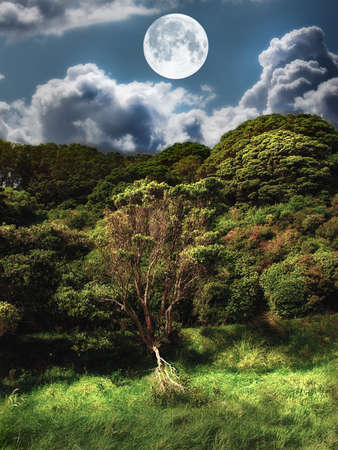 Landscape photo of moonshine - natural Stock Photo