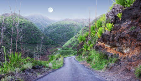 A photo of peace full landscape in the evening (Maui, East Coast, Hawaii) photo