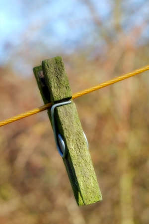 clothes peg: A photo of Old wooden clothes pin Stock Photo