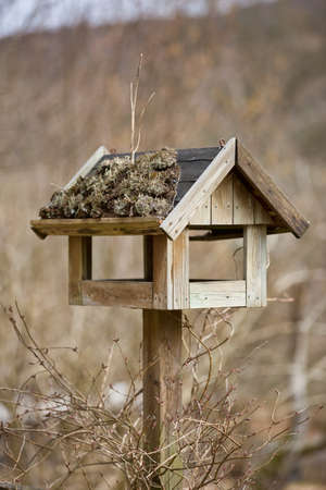 bird feeder: A photo of bird house - feeding place Stock Photo