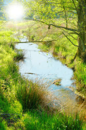 clearing: A photo a small river in the countryside Stock Photo