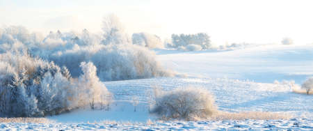 A photo of winter landscape - Denmark photo
