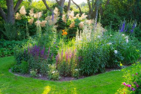 perennial: Garden dreams at sunset in summertime