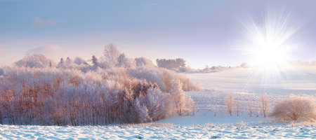 A panorama photo of winter landscape at sunrise photo