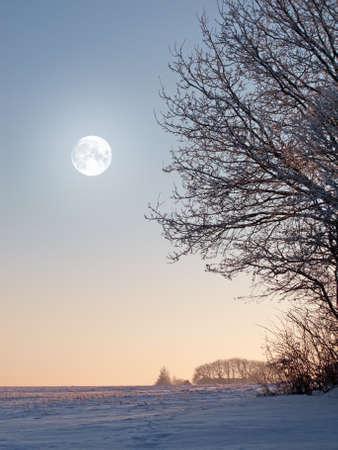 A panorama photo of winter landscape at sunrise Stock Photo - 14859544