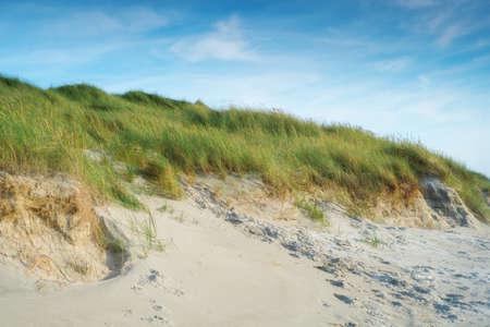 jutland: A photo of coastline in Jutland, Denmark Stock Photo
