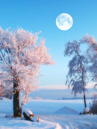 A photo of the moon and winter landscape Stock Photo - 15508393