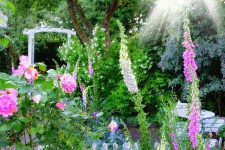 massif de fleurs: Une photo du jardin de fleurs dans la lumi�re du soleil Banque d'images