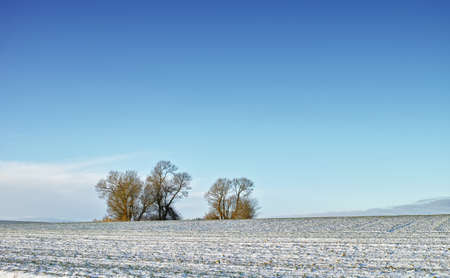 A photo of the countryside in early winter photo