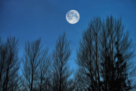 A photo of the moon and Early winter landscape at night in the countryside Stock Photo - 17293320