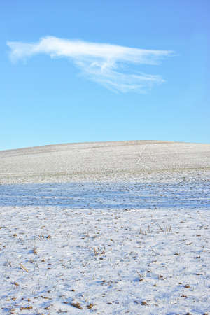 An image of the countryside in winter photo