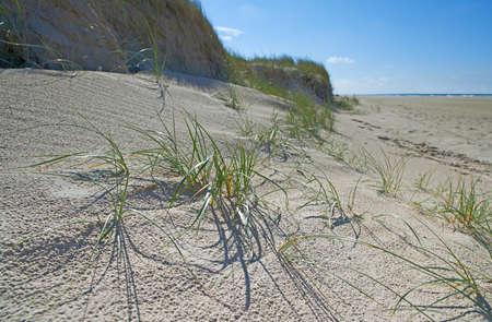 jutland: A photo of the west coast of Jutland, Denmark Stock Photo