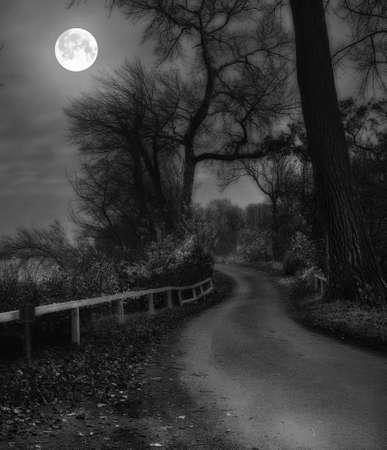 luz de luna: Una foto de brillo Moon - paisaje, por carretera y bosque Foto de archivo