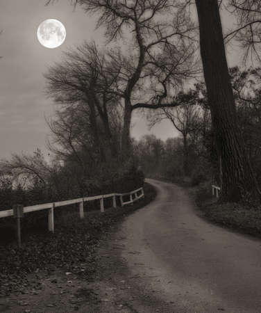 A photo of Moonshine in landscape photo