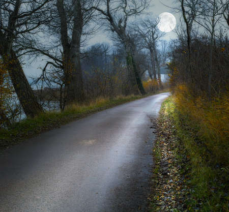 A photo of Moonshine in landscape Stock Photo