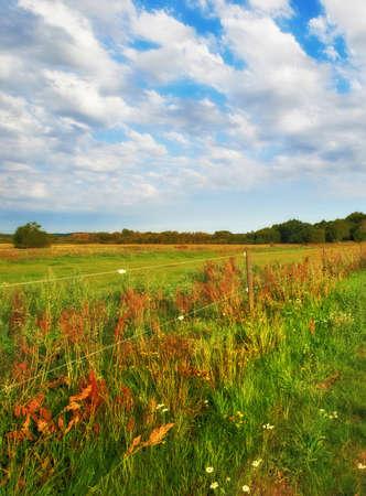 A photo of Danish farmland and countryside photo