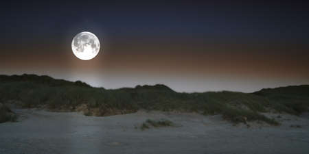 moonshine: A photo of the full moon at night