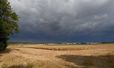 jutland: A photo of Danish farmland and countryside