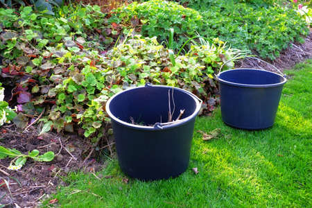 A photo of two buckets in a garden photo