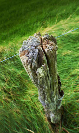 A photo of a fence post Stock Photo - 17328542