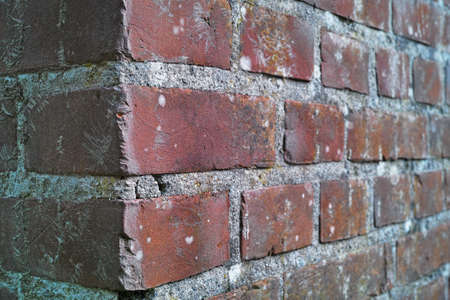 extremely: An extremely detailed photo of a brick wall - very sharp Stock Photo