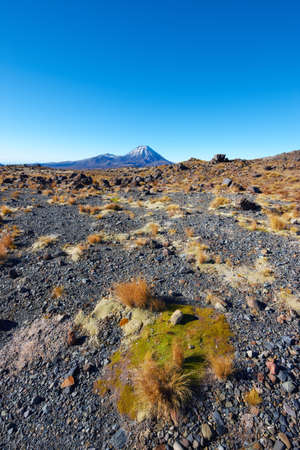 A photo of volcano landscape - New Zealand photo