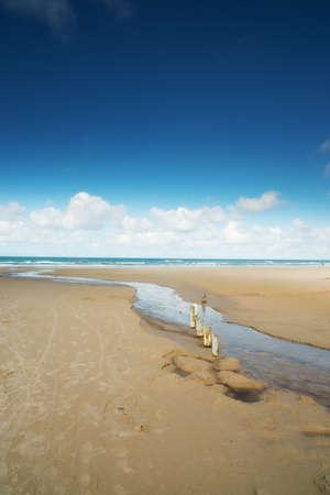 jutland: White sand beach - Jutland, Denmark