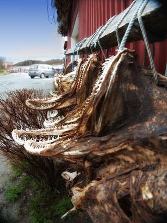 fischerei: Ein Foto Air getrockneten Fisch in Norwegen