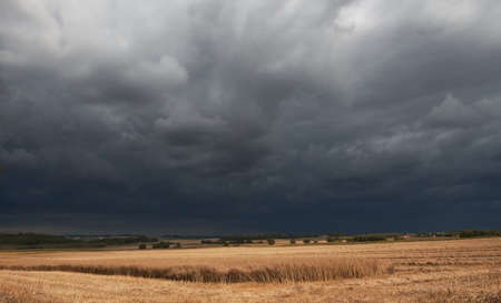 Dark clouds in harvest photo