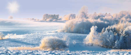 christmas scenery: A panorama photo of winter landscape at sunrise