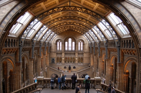museums: Natural History Museum London Stock Photo