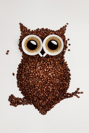 baristas: A funny owl, made of coffee seeds and two caps on grey background.