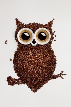 sowa: Zabawna Sowa, wykonane z ziarna kawy i dwie czapki na szarym tle.