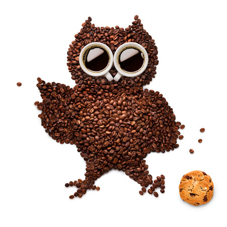 A funny owlet made of roasted coffee beans and two cups with an oatmeal cookie.