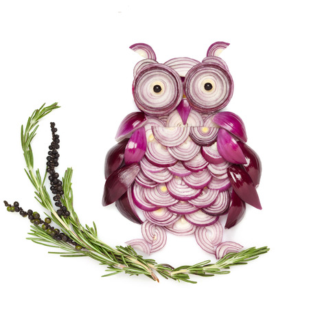 onion rings: An owl made of onion sitting on the branch.