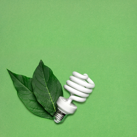 energy symbol: Creative still life of energy saving bulb with leaves as a symbol of environmental protection.