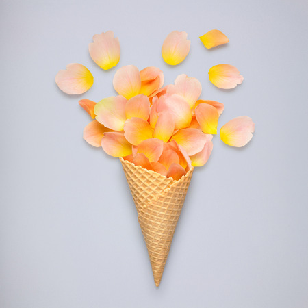 Creative still life of an ice cream waffle cone with rose petals on grey background.