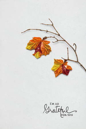 Creative thanksgiving day concept photo of a branch with leaves made of paper on white background. Stock Photo